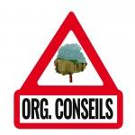 LOGO-ORG-CONSEILS